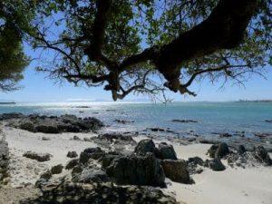 Sandstrand mit Blick auf das Meer